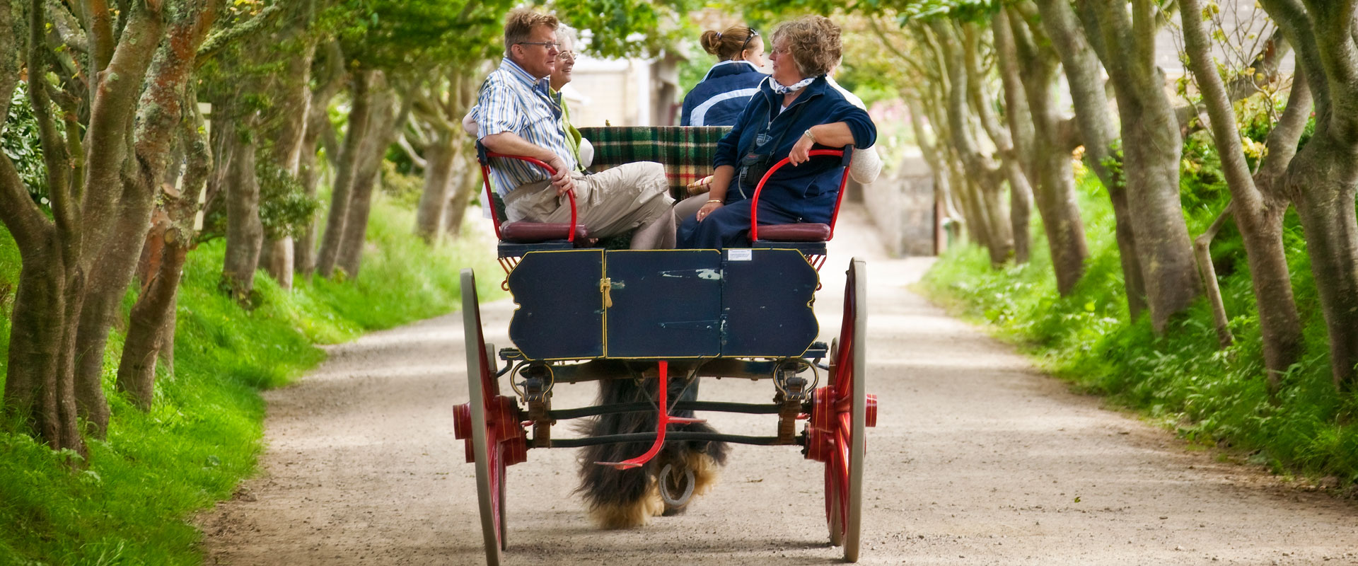 Sark carriage - Images courtesy of VisitGuernsey